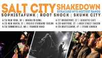 salt city root shock sophistafunk skunk syracuse ithaca downtown the range commons twithaca live music funk reggae summer festival